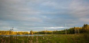 PSNH power lines crossing the wetlands at Turtletown Pond Conservation Area in Concord, New Hampshire.